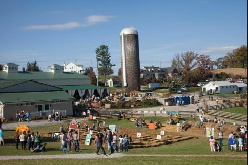 Sinkland Farms 27th Annual Pumpkin Festival Offers 5 Weekends Of Educational Fun The Roanoke Star News